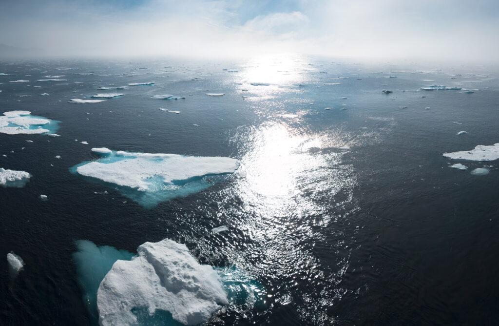 Cop25 e riscaldamento globale: le conseguenze su salute e ambiente - Apoteca Natura