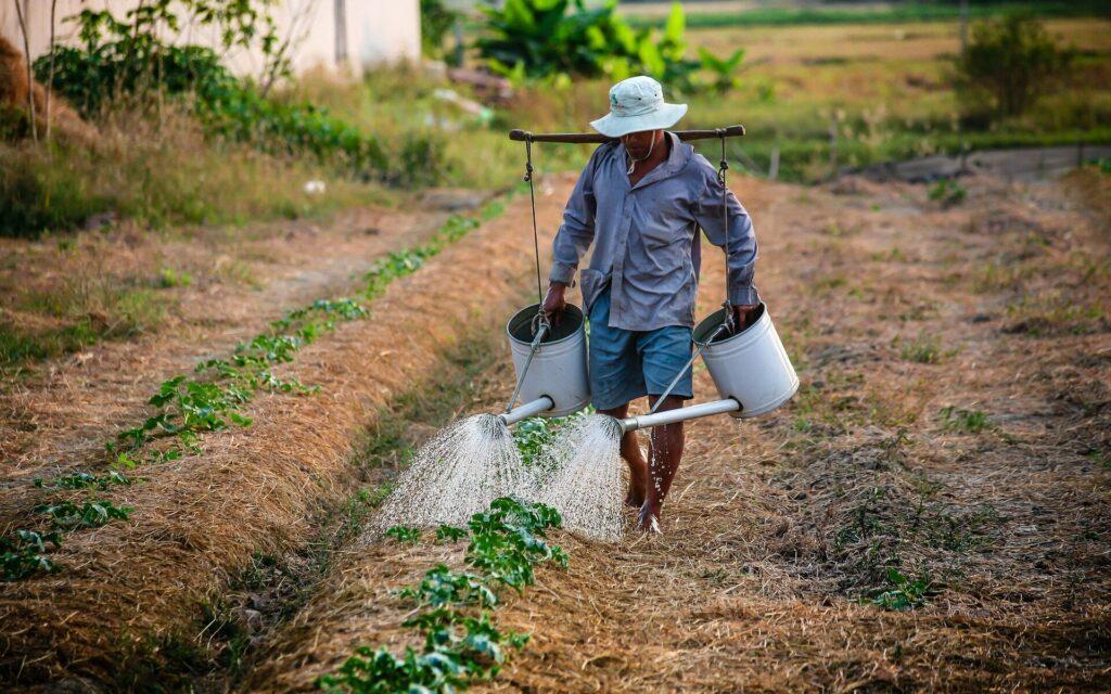 Goccia a goccia: lo spreco dell'acqua si combatte ogni giorno - Apoteca Natura