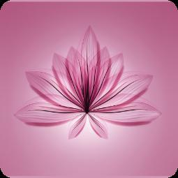 Servizi di Prevenzione di Menopausa e Osteoporosi - Apoteca Natura