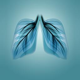 Servizi di Prevenzione delle Vie Respiratorie - Apoteca Natura